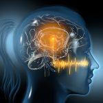 Hearfit-Studie_Bild
